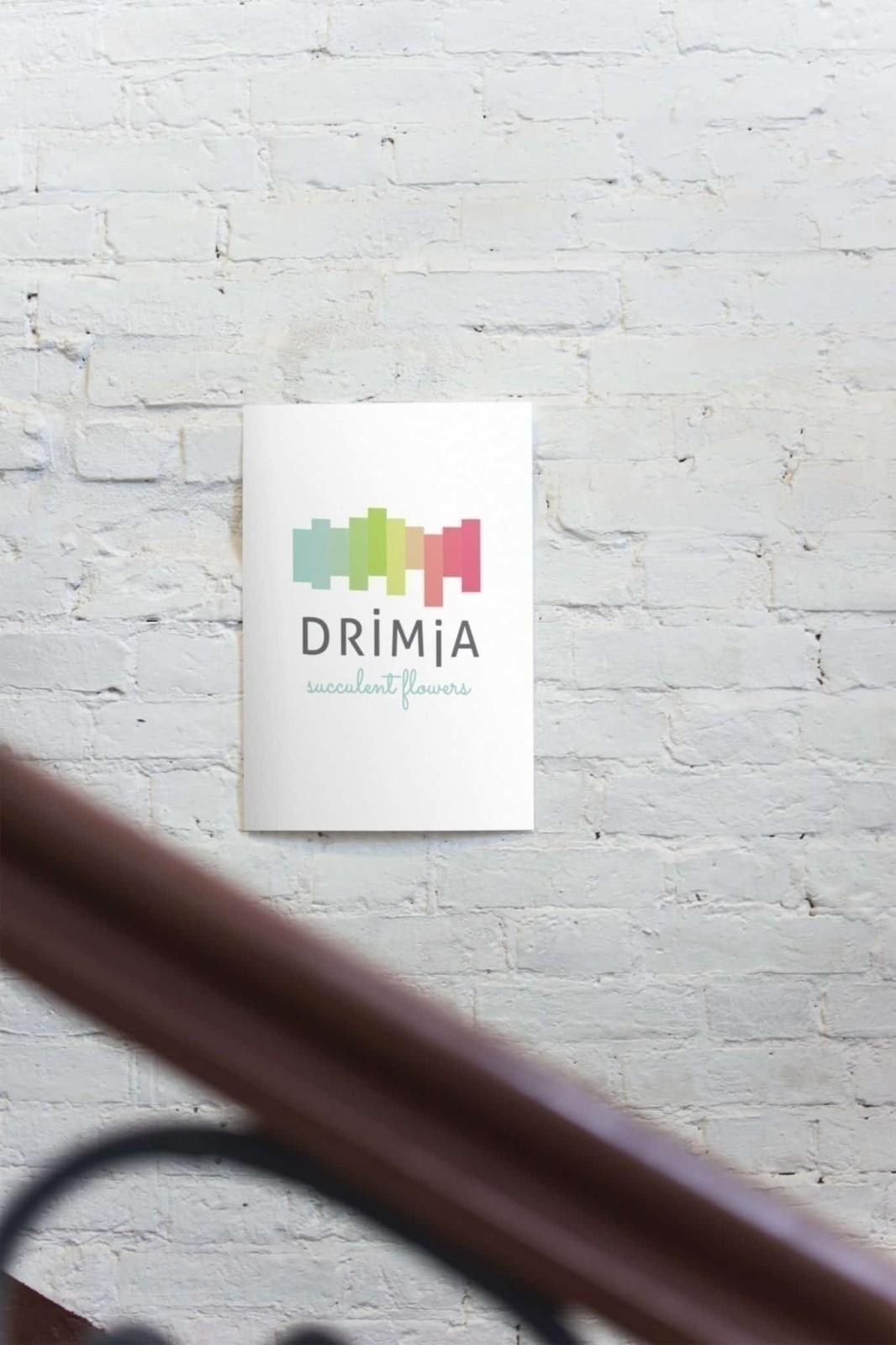 Drimia,